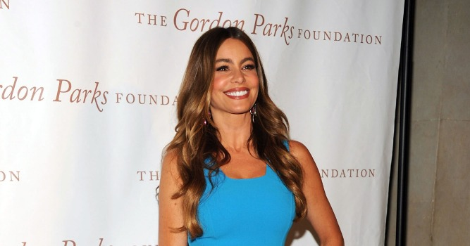 sofia vergara 2013 Gordon Parks Foundation Awards